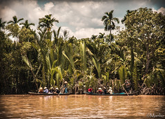Mekong Delta (Manlio'77) Tags: flowers people brown green nature water colors cemetery river boat mood sailing ship moody branches tomb atmosphere delta vietnam waters mekongdelta coloured mekong palmstrees