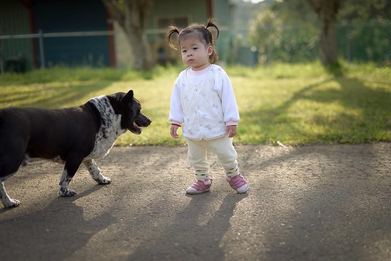 兒童寫真,兒童攝影,寵物攝影,寵物寫真,居家寫真