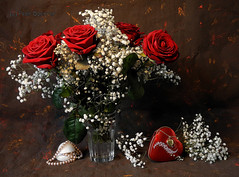 Happy Valentines Day (Colliefan) Tags: life red roses love still heart valentinesday