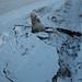 Buracos no gelo
