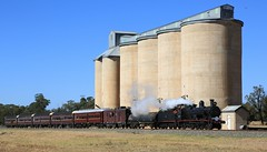 2016-03-19_1018-31-870 3237 on 8S01 at Calleen (gunzel412) Tags: geotagged australia newsouthwales aus calleen girral geo:lat=3377966167 geo:lon=14710488833