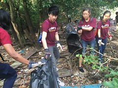 5-Env&CivSoc-World-Water-Day-LCK-Cleanup-26Mar16 (Habitatnews) Tags: mangrove capt nus worldwaterday limchukang iccs