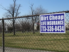 Effective ad placement--Explored (yooperann) Tags: life chicago cemetery sign fence funny advertisement chain dirt link cheap insurance chicagoist