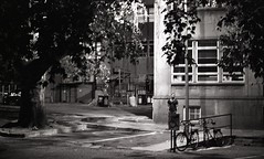 Yeshiel, Night - Scenes from Johannesburg   2015 (Hankyeol Lee) Tags: life street portrait blackandwhite film monochrome night analog 35mm southafrica photography streetlight cityscape kodak tmax documentary scene explore 400 analogue johannesburg wsoa