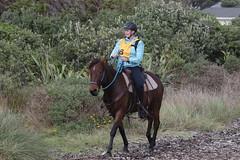 IMG_EOS 7D Mark II201604039896 (David F-I) Tags: horse equestrian horseback horseriding trailriding trailride ctr tehapua watrc wellingtonareatrailridingclub competitivetrailriding sporthorse equestriansport competitivetrailride april2016 tehapua2016 tehapuaapril2016 watrctehapuaapril2016