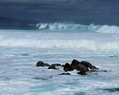 DSC_5302 e5 (J Telljohann) Tags: hawaii maui hookipa