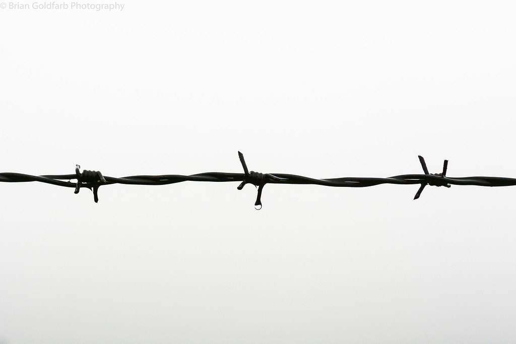 The World\'s Best Photos of auschwitz and barbedwire - Flickr Hive Mind