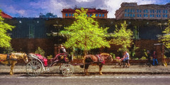 Horse and Buggy (veyoung52) Tags: philadelphia sightseeing visitors topaz horseandbuggy