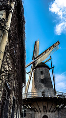 Windmill of Xanten (canaanite98) Tags: street city history mill windmill st viktor germany de deutschland daylight europe cross cathedral wind roman dom jesus culture cologne christian chruch empire civilization christianity christians xanten deutsche germans