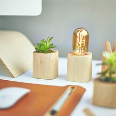 Beautiful Desk Pieces From Plants To A