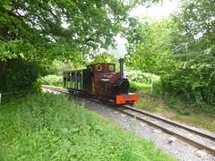 P1050710 (Hampton & Kempton Waterworks Railway.) Tags: loop devon galaday 2015 darent