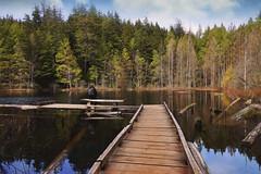 Solitude (charhedman - away till June) Tags: trees lake water reflections bench pier dock figure westvancouver whytelake slidersunday