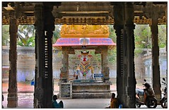 NANDI (RSRIRAO) Tags: india faith nandi southindia kanchipuram shivatemple