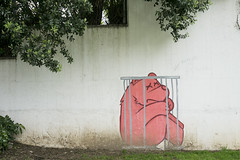 Cool street art in Porto, Portugal (jackie weisberg) Tags: bear art portugal smart interesting eu cage porto clever coolstreetart jackieweisberg bearinacage
