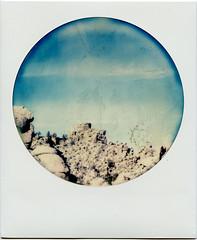 Land of Rocks (T-Terror) Tags: california color polaroid sx70 rocks roadtrip instant day5 joshuatreenationalpark polaroidsx70 polaroidweek joshuatreeca roundframe polaroidsx70alpha1 roidweek impossibleproject roidweek2016