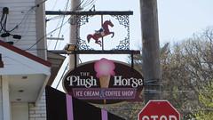 the plush horse (timp37) Tags: park horse ice coffee sign shop illinois cream plush april palos 2016