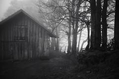 nobody home (Toni_V) Tags: bw mist monochrome fog schweiz switzerland blackwhite europe nebel suisse hiking zurich rangefinder mp zrich svizzera wanderung randonne 2016 svizra escursione sep2 summiluxm leicam schnebelhorn niksoftware 35lux messsucher 160418 silverefexpro2 35mmf14asphfle typ240 toniv m2404424