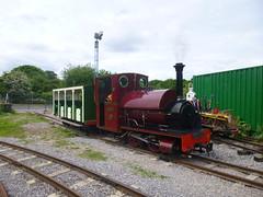P1050724 (Hampton & Kempton Waterworks Railway.) Tags: loop devon galaday 2015 darent