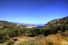 Gournia vista (Tony Shertila) Tags: blue trees sky archaeology weather geotagged site europe day view outdoor horizon scenic olive clear greece crete remains grc neapolikritis geo:lat=3510957459 geo:lon=2579286218 pacheammos 20160413094250