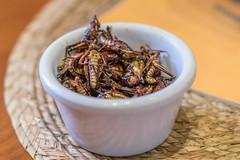 Chapulines Fritos Mexicanos (ruimc77) Tags: food mxico de mexico 50mm nikon df ciudad cricket fritos mexican mexicanos af nikkor fried coyoacan grasshoppers cusine grilo gafanhotos chapulines f18d d810
