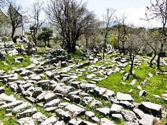 Stone warehouse (StefoF) Tags: temple greece grecia apollo mythology ancientgreece tempio megalopolis mitologia bassae apolloepicurious anticagrecia tempiodiapolloepicurio