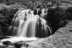 Alamere Falls (Upper Falls) (Justlai87) Tags: sanfrancisco california blackandwhite monochrome northerncalifornia waterfall pointreyes marinheadlands pointreyesnationalseashore alamerefalls
