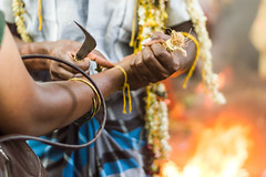 Breaking Bangles | Koovagam Annual Transgender Festival,India (vjisin) Tags: travel people woman india man heritage face festival temple fire 50mm nikon asia mourning diverse ngc culture documentary crossdressing transgender identity widow transexual queer gender tamilnadu genderqueer bangles shemale hijra androgyne heterosexuality documentaryphotography transsexualism villupuram niftyfifty twospirit intersexuality koovagam bigender koothandavar ulundurpet thirunangai aravaan chennaiweekendclickers trigender nikonofficial cwc523