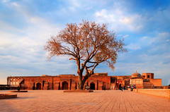 Untitled ancient tree (Fortunes2011. Haunting Nostalgia) Tags: pakistan sky building tree architecture clouds landscape fort empire lahorefort shahiqila shahjahan 15thcentury mughal emperorakbar fortunes2011nikon