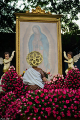 Our Lady of Guadalupe (Fritz, MD) Tags: procession intramuros sanjuandiego ourladyofguadalupe intramurosmanila prusisyon nuestraseñoradeguadalupe grandmarianprocession marianprocession marianevents igmp2015 intramurosgrandmarianprocession2015