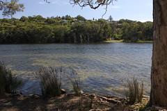 MacMasters Beach (cathm2) Tags: travel nature coast australia lagoon nsw centralcoast macmastersbeach