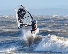PC311702-Edit (Brian Wadie Photographer) Tags: gulls oystercatcher windsurfing kiting em1 goodlight 14xtc avonbeach canon70300lis hemgistburyhead
