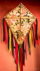 Kite - red, black & yellow (Enio Godoy - www.picturecumlux.com.br) Tags: travel red kite black yellow folkart artesanato férias preto vermelho amarelo viagem cloth vacations pipa tecido artepopular g15 águasdesãopedro handscraft canong15