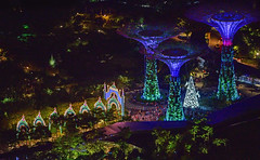s Dec28_Gardens By The Bay_Christmas DSC_8460 (Andrew JK Tan) Tags: christmas decorations lights dragonfly reindeers luminaire 2015 gbtb supertrees