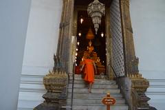 DSC_0835 (Newtang) Tags: bangkok monk watpho buddhistmonk