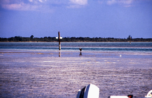 """Bahamas 1989 (379) Eleuthera: Spanish Wells, St. George's Cay • <a style=""""font-size:0.8em;"""" href=""""http://www.flickr.com/photos/69570948@N04/24168641560/"""" target=""""_blank"""">View on Flickr</a>"""