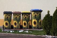 9-366, Familienfoto (julia_HalleFotoFan) Tags: gelb eyecatcher sonnenblumen mlltonnen hingucker