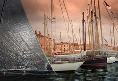 Port de Saint Tropez / Quai de Suffren (buch.daniele) Tags: france port quai var mats ros sainttropez voiles danielebuch