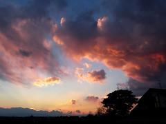 #6720 sunset and clouds (Nemo's great uncle) Tags: sunset  setagaya  setagayaku tky  seij  fujimibashi