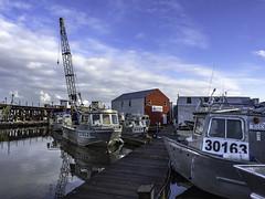 Crab Harbour (Tony Tomlin) Tags: railroad trestle marina harbour cranes crescentbeach bnsf crabbers crabboats aluminiumboats