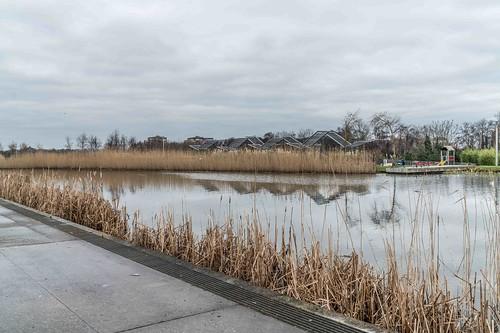 Wind Powered Public Park In Clongriffin Dublin [Father Collins Park]-110940