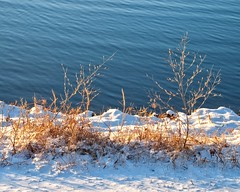 Winters Warmth (DASEye) Tags: winter sun lake snow nikon warm glow warmth sunsglow davidadamson daseye