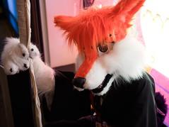 P1230178 (Kakurady) Tags: red furry cosplay bleach ichigo fursuit ganime zanpakuto