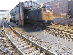 Class 25 at Hammerton Hill Depot. (ManOfYorkshire) Tags: 2001 scale train model diesel shed railway depot locomotive idle hornby 176 oogauge 25056 class25 hammertonhill