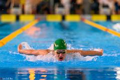 DSC_2294_290116_1913 (Kristiansand svmmeallianse) Tags: swimming swim skagerrak kristiansand ksa aquaram skagerrakswim2016