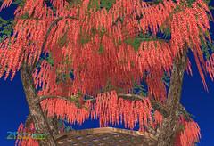 Wisteria Heart Nest (zuza ritt) Tags: pink blue wedding red orange green yellow blossom avatar violet valentine gazebo treehouse trellis secondlife boardwalk pandora lattice wysteria wistaria virtualworld kitely metaversum opensim seasonaltree opensimulator secondlifetree kitelymarket secodlifelandscape