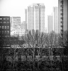 Human Scale (Doug Knisely) Tags: street trees buildings smog haze beijing olympus pollution layers 40150r omdem5markii