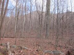 20151127,152220,Canon PowerShot S95 (orndorffr) Tags: mountain virginia hiking climbing va oldragmountain oldrag