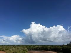 Coming Home (Rantz) Tags: blue sky cloud clouds darwin 365 roger northernterritory mobilography bluetiful rantz doesanyonereadtagsanymore mobilographypad2016 psad2016