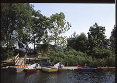 Baltimore rowboats (1 of 1) (sailronin) Tags: trees water colors baltimore fujifilm rowboats mamiyac330 grasss innerharboreast