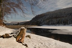 Un lac en hiver (Gisou68Fr) Tags: schnee winter lake snow france ice see hiver lac alsace neige reflexions reflets barrage glace 68 hautrhin lacdelalauch upperrhine